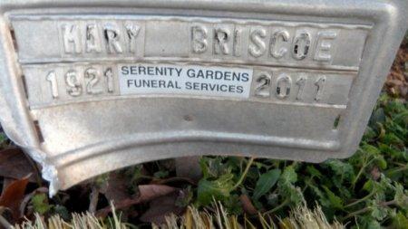 BRISCOE, MARY - Drew County, Arkansas | MARY BRISCOE - Arkansas Gravestone Photos