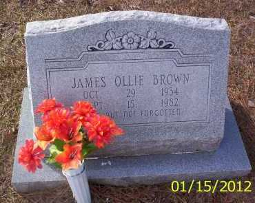 BROWN, JAMES OLLIE - Drew County, Arkansas | JAMES OLLIE BROWN - Arkansas Gravestone Photos