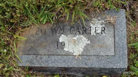 CARTER, GEORGE WILLIAM - Drew County, Arkansas | GEORGE WILLIAM CARTER - Arkansas Gravestone Photos