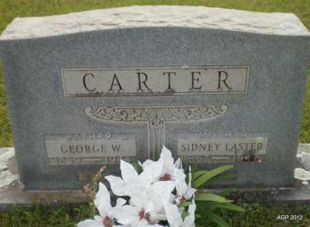 CARTER, GEORGE W - Drew County, Arkansas | GEORGE W CARTER - Arkansas Gravestone Photos
