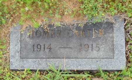 CARTER, HOMER - Drew County, Arkansas | HOMER CARTER - Arkansas Gravestone Photos