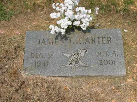 CARTER, JAMES F - Drew County, Arkansas | JAMES F CARTER - Arkansas Gravestone Photos