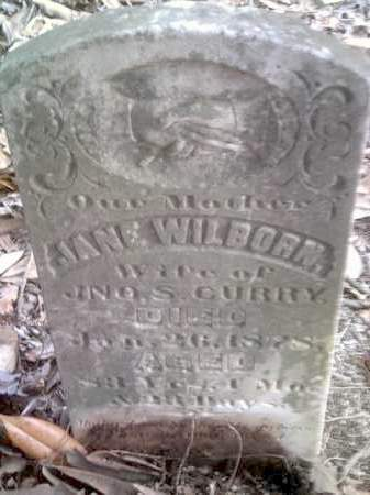 WILBORN CURRY, JANE - Drew County, Arkansas | JANE WILBORN CURRY - Arkansas Gravestone Photos