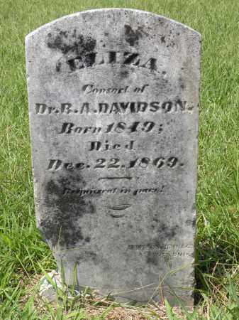 DAVIDSON, ELIZA - Drew County, Arkansas | ELIZA DAVIDSON - Arkansas Gravestone Photos