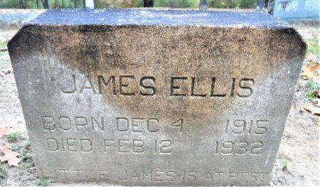 ELLIS, JAMES - Drew County, Arkansas | JAMES ELLIS - Arkansas Gravestone Photos