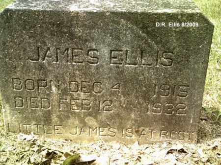ELLIS, JAMES - Drew County, Arkansas   JAMES ELLIS - Arkansas Gravestone Photos