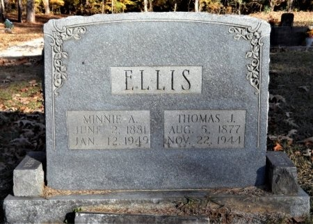 ELLIS, MINNIE A - Drew County, Arkansas | MINNIE A ELLIS - Arkansas Gravestone Photos