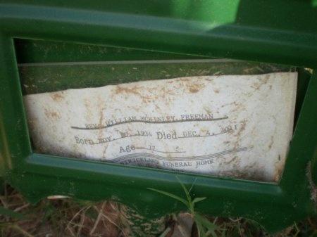 FREEMAN, WILLIAM MCKINLEY - Drew County, Arkansas | WILLIAM MCKINLEY FREEMAN - Arkansas Gravestone Photos