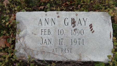 GRAY, ANN - Drew County, Arkansas | ANN GRAY - Arkansas Gravestone Photos