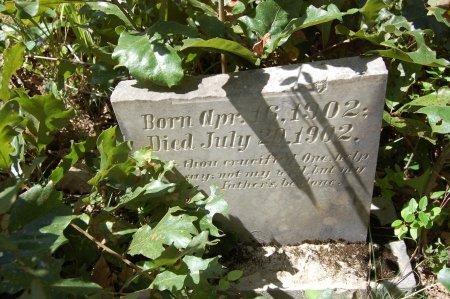 GRAY, THERON - Drew County, Arkansas   THERON GRAY - Arkansas Gravestone Photos