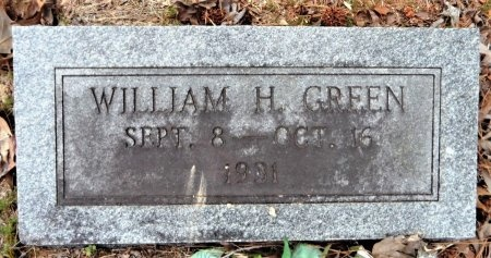 GREEN, WILLIAM H. - Drew County, Arkansas | WILLIAM H. GREEN - Arkansas Gravestone Photos