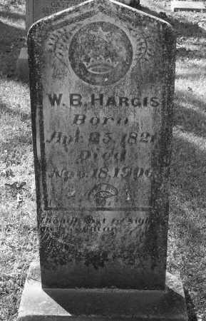 HARGIS, WASHINGTON BLACKARD - Drew County, Arkansas | WASHINGTON BLACKARD HARGIS - Arkansas Gravestone Photos