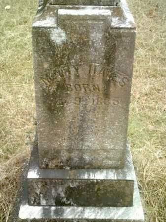 HAYES, MARY - Drew County, Arkansas | MARY HAYES - Arkansas Gravestone Photos