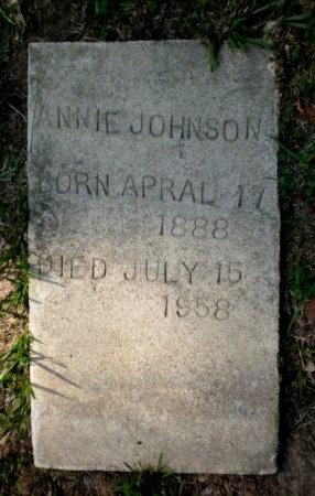 JOHNSON, ANNIE - Drew County, Arkansas | ANNIE JOHNSON - Arkansas Gravestone Photos