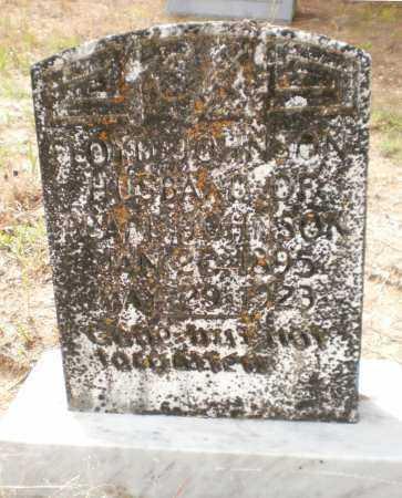 JOHNSON, FLOYD - Drew County, Arkansas   FLOYD JOHNSON - Arkansas Gravestone Photos