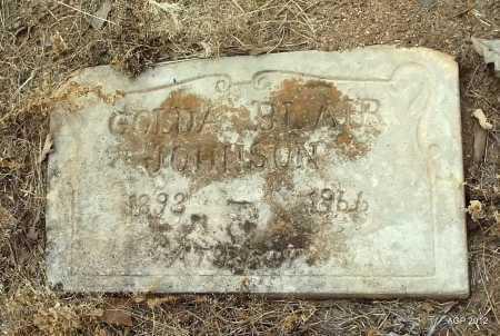 JOHNSON, GOLDA - Drew County, Arkansas | GOLDA JOHNSON - Arkansas Gravestone Photos