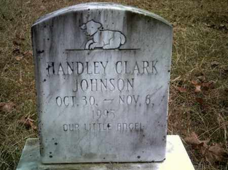 JOHNSON, HANDLEY CLARK - Drew County, Arkansas | HANDLEY CLARK JOHNSON - Arkansas Gravestone Photos