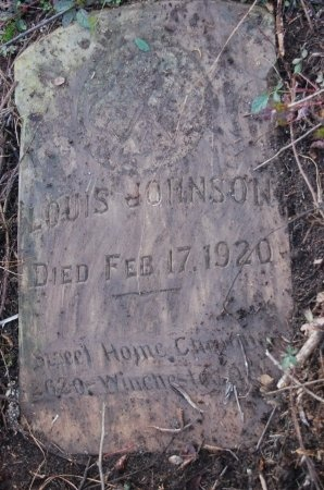 JOHNSON, LOUIS - Drew County, Arkansas   LOUIS JOHNSON - Arkansas Gravestone Photos