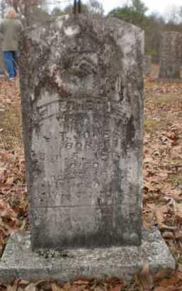 JONES, ELISABETH E - Drew County, Arkansas | ELISABETH E JONES - Arkansas Gravestone Photos