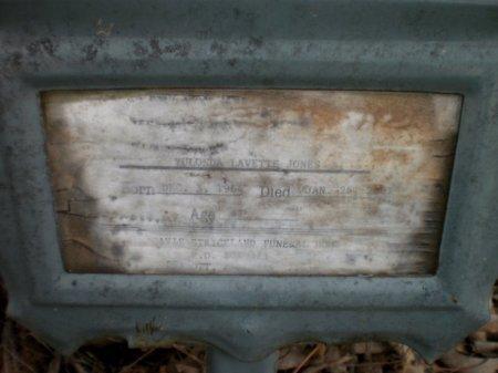 JONES, YULONDA LAVETTE - Drew County, Arkansas | YULONDA LAVETTE JONES - Arkansas Gravestone Photos