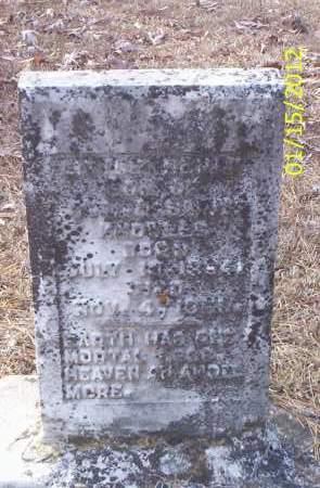 KNOWLES, HENRY - Drew County, Arkansas | HENRY KNOWLES - Arkansas Gravestone Photos