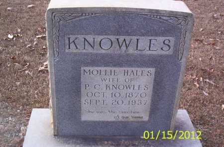 KNOWLES, MOLLIE - Drew County, Arkansas | MOLLIE KNOWLES - Arkansas Gravestone Photos