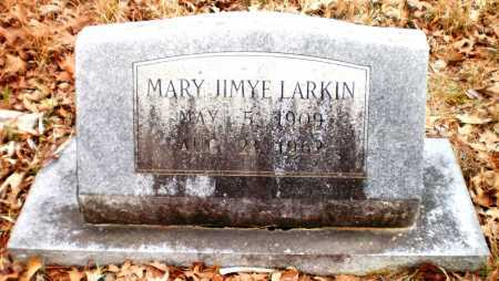 GASTER LARKIN, MARY JIMYE - Drew County, Arkansas | MARY JIMYE GASTER LARKIN - Arkansas Gravestone Photos