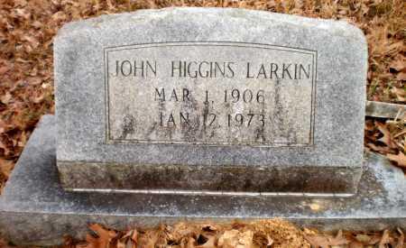 LARKIN, JOHN HIGGINS - Drew County, Arkansas | JOHN HIGGINS LARKIN - Arkansas Gravestone Photos