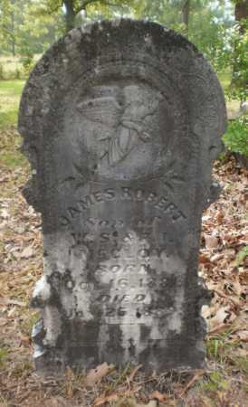 MCCLOY, JAMES ROBERT - Drew County, Arkansas | JAMES ROBERT MCCLOY - Arkansas Gravestone Photos