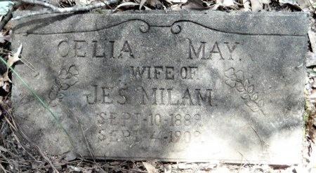 MILAM, CELIA MAY - Drew County, Arkansas | CELIA MAY MILAM - Arkansas Gravestone Photos