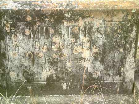 MULLINS, EARNEST M - Drew County, Arkansas | EARNEST M MULLINS - Arkansas Gravestone Photos