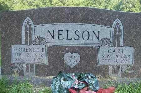 NELSON, CARL - Drew County, Arkansas   CARL NELSON - Arkansas Gravestone Photos