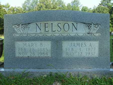 NELSON, JAMES A - Drew County, Arkansas | JAMES A NELSON - Arkansas Gravestone Photos