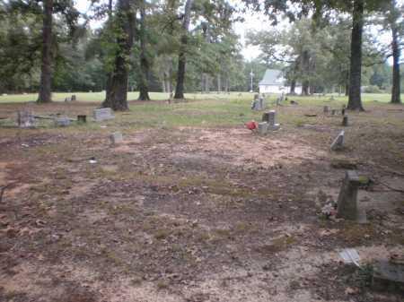 *OVERVIEW,  - Drew County, Arkansas    *OVERVIEW - Arkansas Gravestone Photos