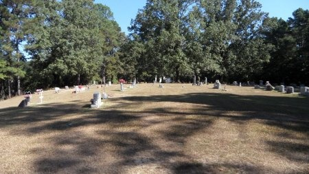*OVERVIEW, CENTERPOINT CEMETERY - Drew County, Arkansas | CENTERPOINT CEMETERY *OVERVIEW - Arkansas Gravestone Photos