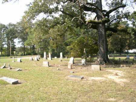 *OVERVIEW,  - Drew County, Arkansas |  *OVERVIEW - Arkansas Gravestone Photos