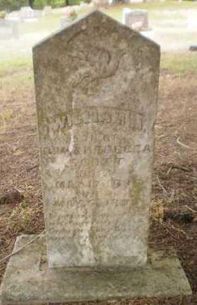 SCOTT, WILLIAM M - Drew County, Arkansas | WILLIAM M SCOTT - Arkansas Gravestone Photos