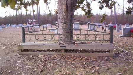 *SIGN,  - Drew County, Arkansas |  *SIGN - Arkansas Gravestone Photos