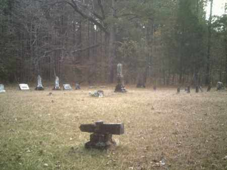 SPRING, HILL - Drew County, Arkansas   HILL SPRING - Arkansas Gravestone Photos