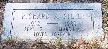 STEELE, RICHARD R - Drew County, Arkansas | RICHARD R STEELE - Arkansas Gravestone Photos
