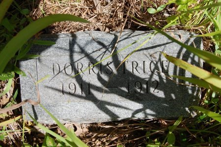 TRICE, DORRIS - Drew County, Arkansas | DORRIS TRICE - Arkansas Gravestone Photos