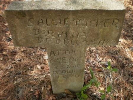 TUCKER, SALLIE - Drew County, Arkansas   SALLIE TUCKER - Arkansas Gravestone Photos