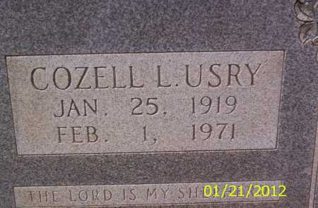 USRY, COZELL L - Drew County, Arkansas | COZELL L USRY - Arkansas Gravestone Photos