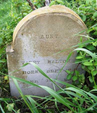 WALTON, VINEY - Drew County, Arkansas | VINEY WALTON - Arkansas Gravestone Photos