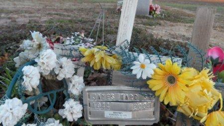 WARD, SR., JAMES - Drew County, Arkansas | JAMES WARD, SR. - Arkansas Gravestone Photos