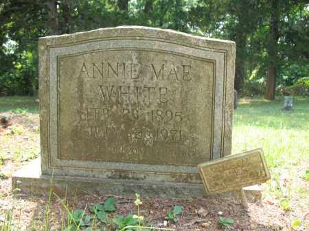 WHITE, ANNIE MAE - Drew County, Arkansas | ANNIE MAE WHITE - Arkansas Gravestone Photos