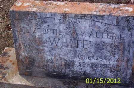 WHITE, WALTER L - Drew County, Arkansas | WALTER L WHITE - Arkansas Gravestone Photos