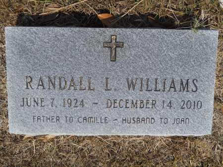 WILLIAMS, RANDALL L - Drew County, Arkansas | RANDALL L WILLIAMS - Arkansas Gravestone Photos