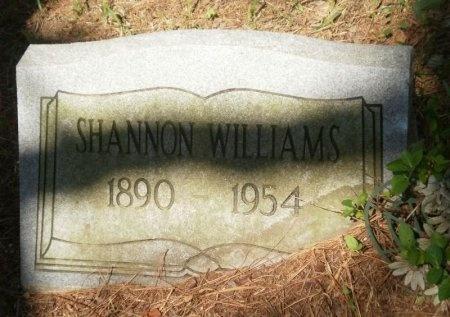 WILLIAMS, SHANNON - Drew County, Arkansas   SHANNON WILLIAMS - Arkansas Gravestone Photos