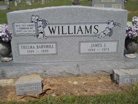 WILLIAMS, JAMES J - Drew County, Arkansas | JAMES J WILLIAMS - Arkansas Gravestone Photos